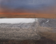 Landscape with Flooded Field I, 1995