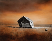 Prairie Dwelling VIII, 1996