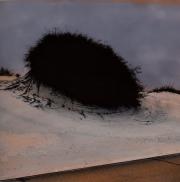 Black Bush in Desert, 1997