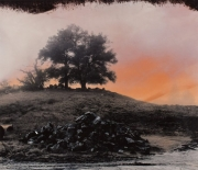 Tree with Rockpile in Fog, 1998