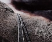 Ladder Over Fauna Wall, 2000